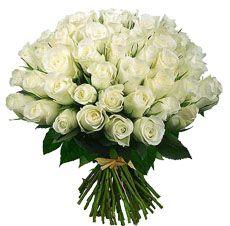 Доставка цветов кипр пафос цветы ранункулюса купить
